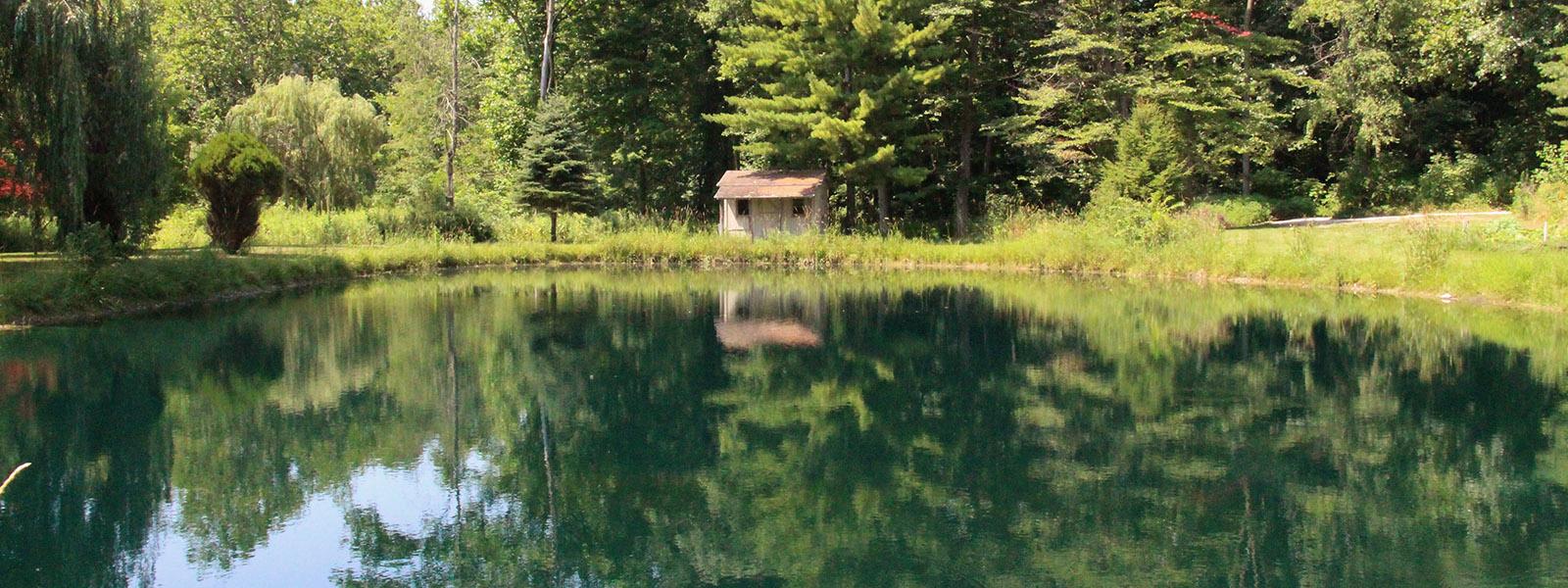 Pond at Bradner Preserve Wood County Park District