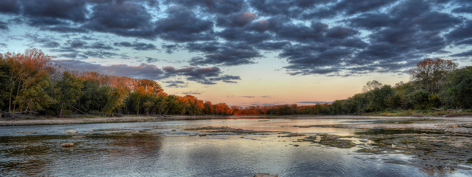 Buttonwood at dusk photo by Mike Guh