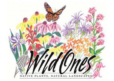 Wild Ones Toledo logo