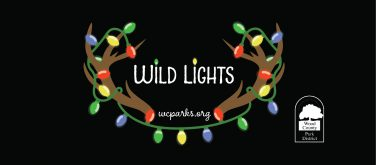 Wild Lights Logo of Christmas Lights wrapped around antlers