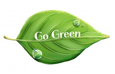 graphic of leaf with the words Go Green